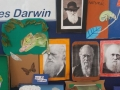 exposicao_darwin_a7_AME (25)