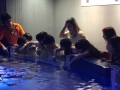 passeio_aquario_JPA (19)