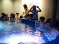 passeio_aquario_JPA (6)