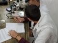 02 Aula Briofitas e Pteridófitas M22