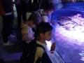 passeio_aquario_JPA (33)