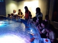 passeio_aquario_JPA (7)